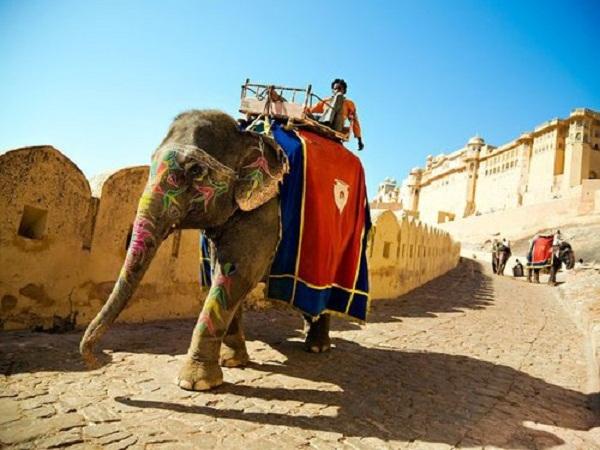Một chuyến du lịch tới Ấn Độ