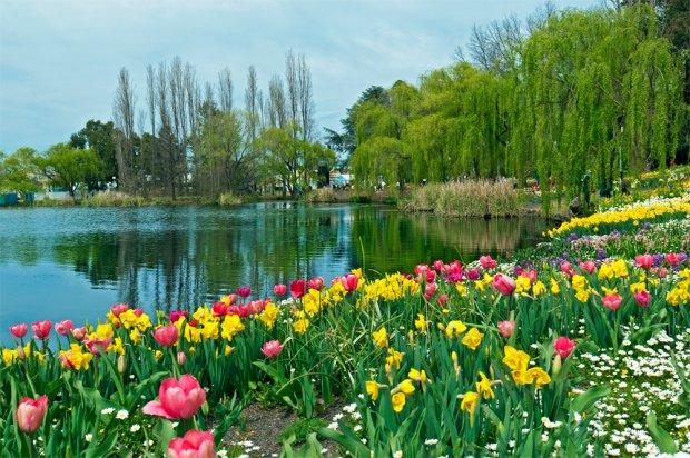 Công viên Floriade
