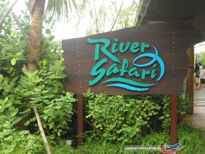 River Safari2