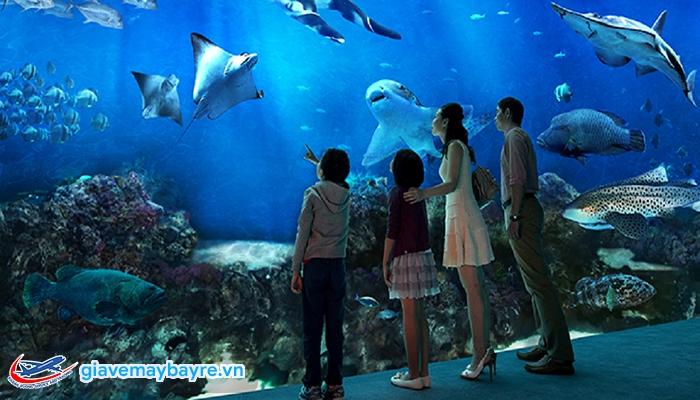 Thủy cung SEA Aquarium lớn nhất Đông Nam Á